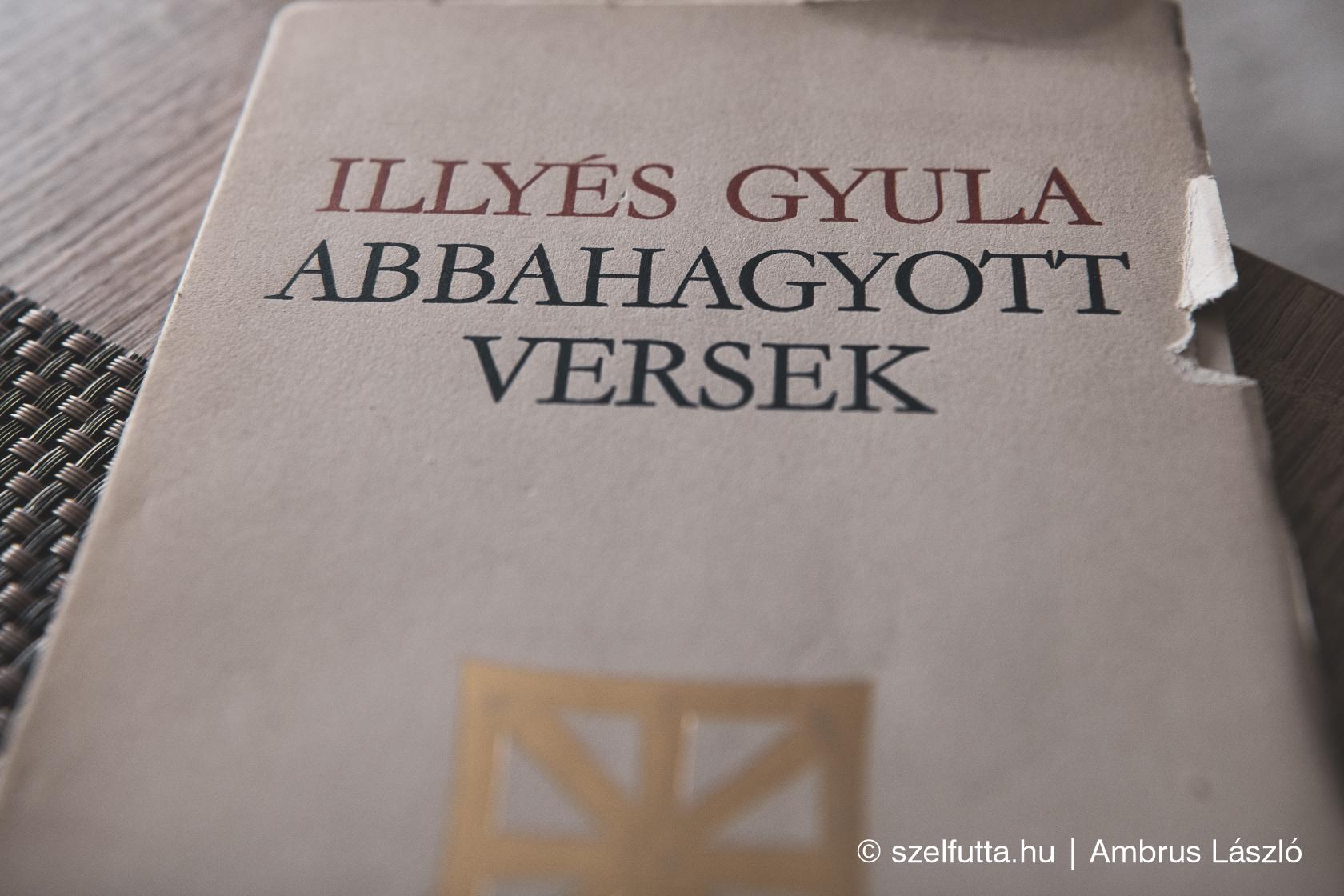 ILLYÉS GYULA - ABBAHAGYOTT VERSEK