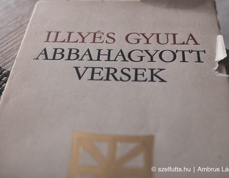 ILLYÉS GYULA – Abbahagyott Versek